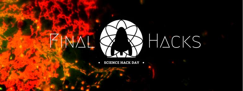 final hacks SHDV17